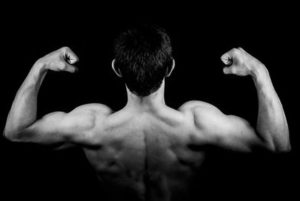Bodybuilding Routines For Mass